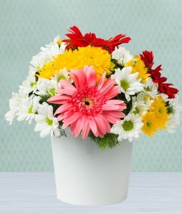 Seramik Vazoda Gelbera ve Papatya  Mardin çiçek gönderme