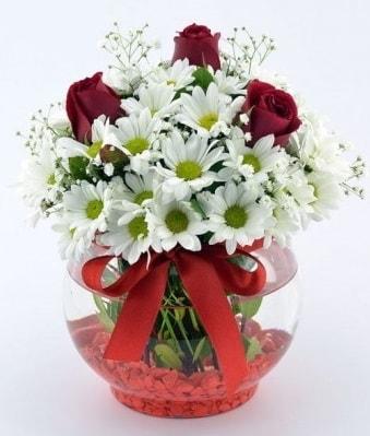Fanusta 3 Gül ve Papatya  Mardin internetten çiçek satışı
