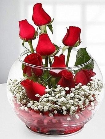 Kırmızı Mutluluk fanusta 9 kırmızı gül  Mardin çiçek siparişi sitesi