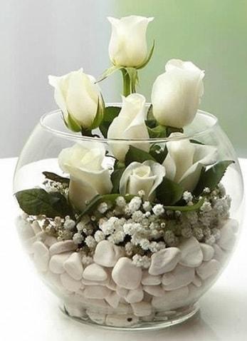 Beyaz Mutluluk 9 beyaz gül fanusta  Mardin çiçek siparişi sitesi