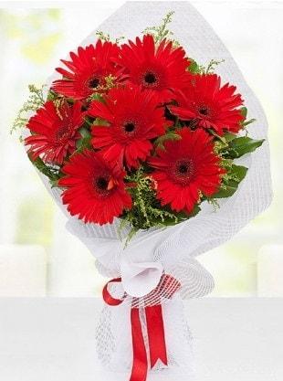 Kırmızı Gelbera Buketi  Mardin internetten çiçek siparişi