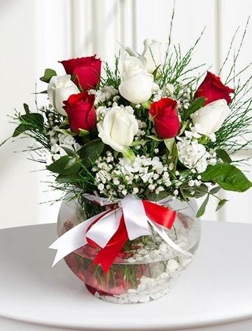 Aşk Küresi  5 beyaz 5 kırmızı gül fanusta  Mardin internetten çiçek satışı