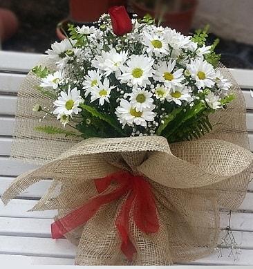 Papatya 1 adet kırmızı gül buketi  Mardin çiçekçiler