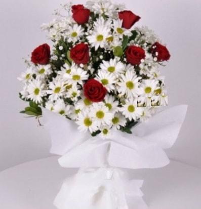 7 adet kırmızı gül ve papatyalar krizantem  Mardin internetten çiçek satışı