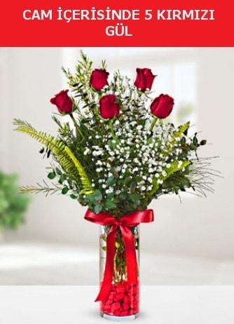 Cam içerisinde 5 adet kırmızı gül  Mardin çiçek siparişi sitesi