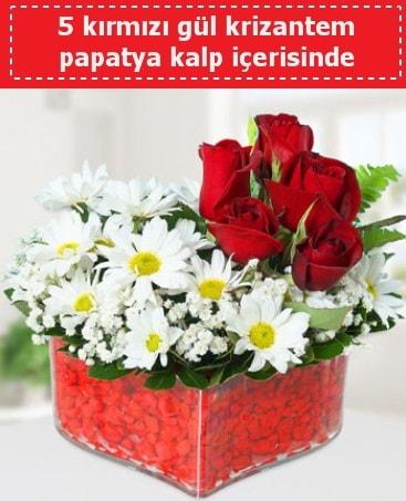 mika kalp içerisinde 5 kırmızı gül papatya  Mardin çiçek gönderme