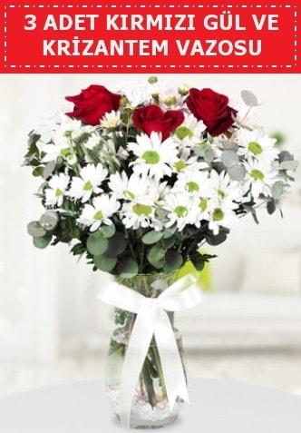 3 kırmızı gül ve camda krizantem çiçekleri  Mardin çiçek gönderme