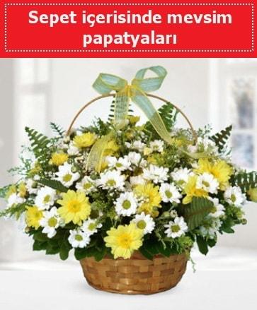 Sepet içerisinde mevsim papatyaları  Mardin ucuz çiçek gönder