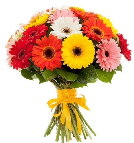 Gerbera demeti buketi  Mardin çiçek satışı