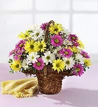 Mardin çiçekçiler  Mevsim çiçekleri sepeti